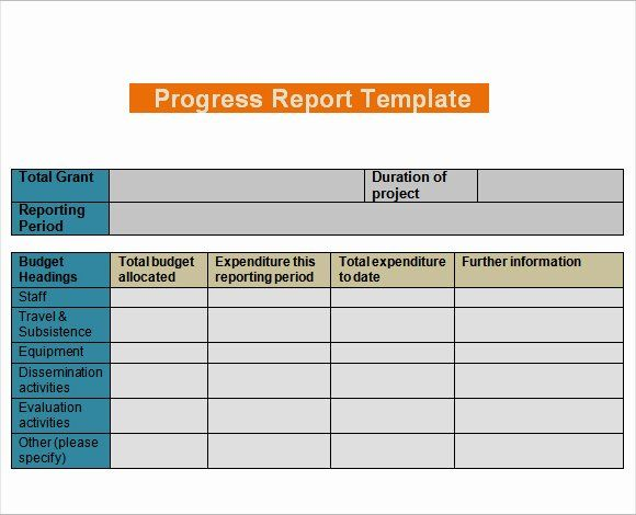 Daily Work Report Template Inspirational Daily Progress Report Templates Writing Word Excel Form Project Status Report Progress Report Template Progress Report