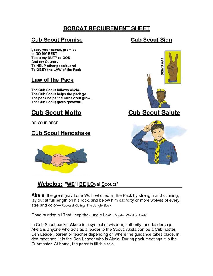 cub scouts | Cub Scout Motto Cub Scout Salute.....use to reivew bobcat requirements