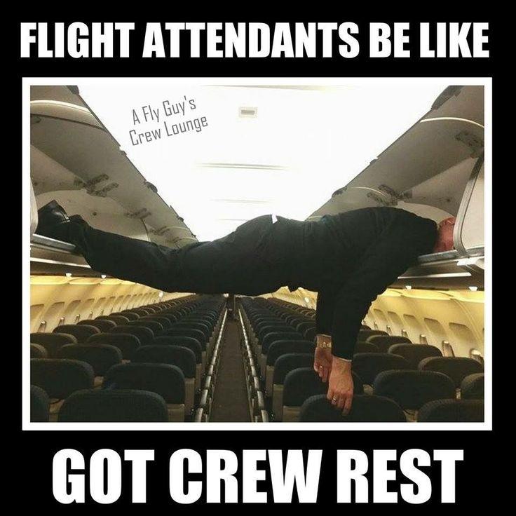 Loooool aviationhumorjokes in 2019 Flight attendant