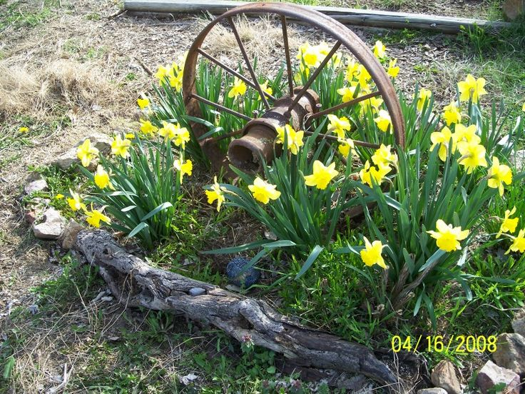 Wagon wheel gardens images google search yard for Garden accessories sale