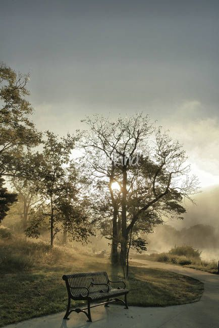 """""""Misty Morning HDR"""" by Chris Wolters Photography, Missouri //  // Imagekind.com -- Buy stunning, museum-quality fine art prints, framed prints, and canvas prints directly from independent working artists and photographers."""