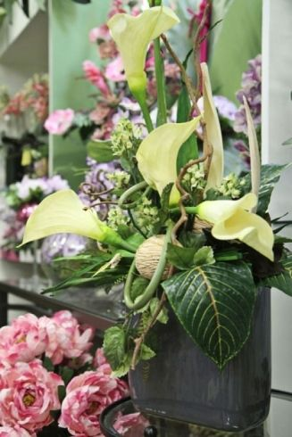 Composizioni floreali - Torino - Erbamatta
