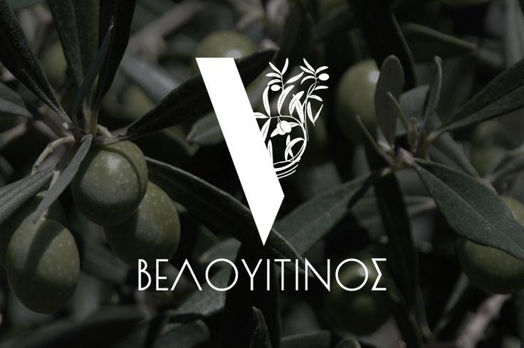 Σχεδιασμός λογοτύπου για την επιχείρηση ΒΕΛΟΥΙΤΙΝΟΣ, παραγωγής και εμπορίας Θασίτικης ελιάς και ελαιόλαδου. / Logo design for VELOUITINOS, cultivation and packaging of Thassos olive and olive oil.