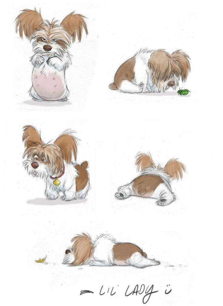 Character Design Dog : Lil lady by jeff maka merghart http jeffmerghart