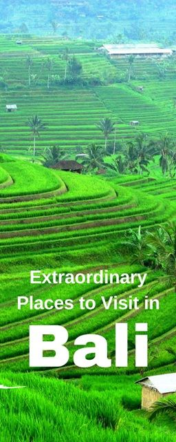 """Extraordinary Places to Visit in Bali The profoundly religious and unequaled culture of Bali, with a picturesque backdrop of sandy beaches, rugged coastlines, desolate volcanic hillsides, abundant rice terraces, valleys, lakes and stunning hills and mountains have earned it the name """"The Island of the Gods""""."""