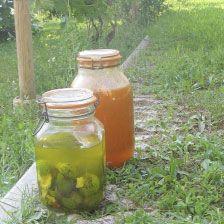 Home-made liqueurs (green walnut and apricot) ripening in the sun - Locanda della Valle Nuova - Urbino - Le Marche - Italy  www.vallenuova.it