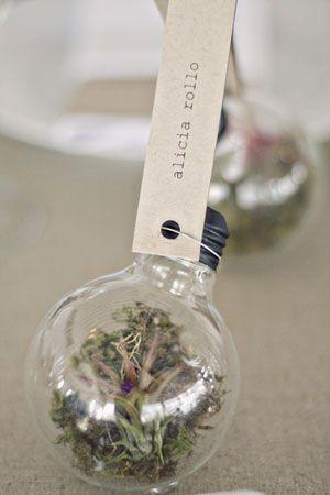 Terrarium wedding favours and centrepieces #botanical, #weddingfavour