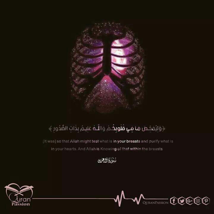 وإن الإلتزآم الحقيقي هو الإلتزآم النآبع م ـن القلب إلي الرحمــ ن فإجع ل يآلله إلتزآمنا نآبع من قلو بنآ و صدو رنا Quran Quotes Islamic Quotes Quran