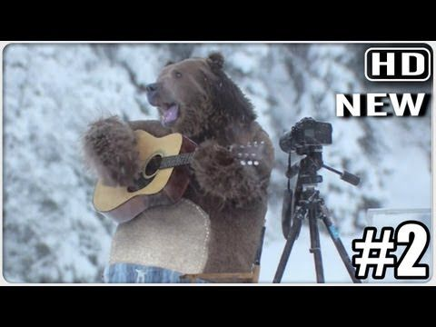 ▶ Huge Bear Surprises The Film Crew At Samsung EcoBubble Washing Machine Shoot - YouTube