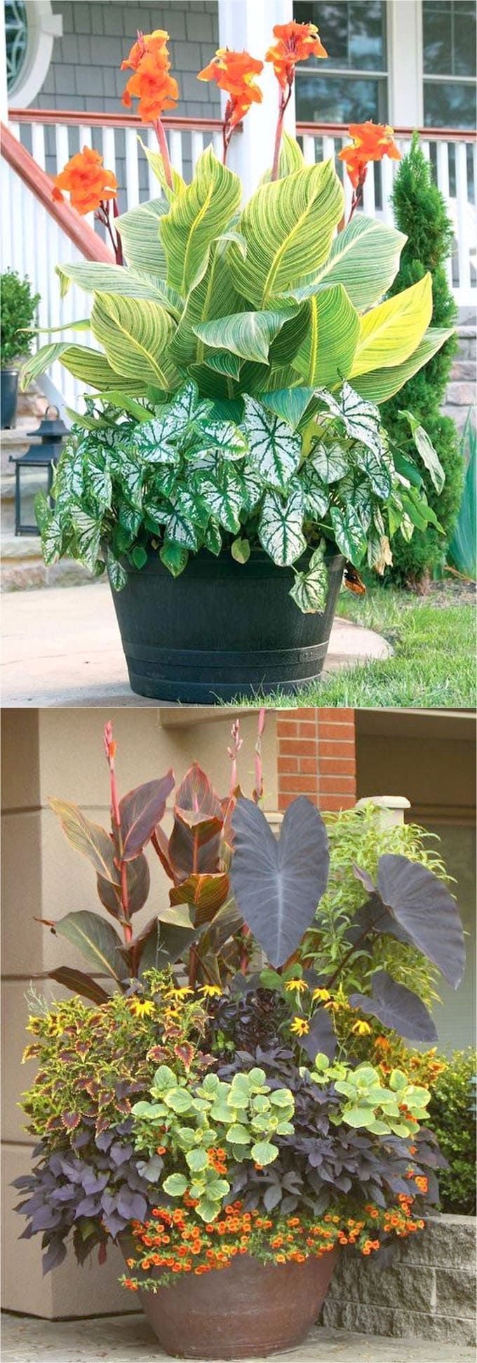 Colorful flower gardening in pots made easy with 38 best designer plant list for each container and sun vs shade locations. Grow a beautiful flower garden with these proven combinations and success tips! - A Piece of Rainbow #Containergardening