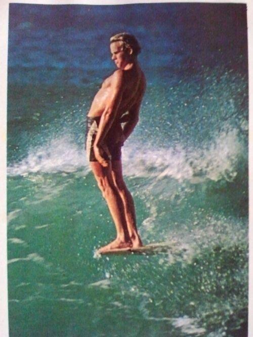 1970s surf culture - Google Search