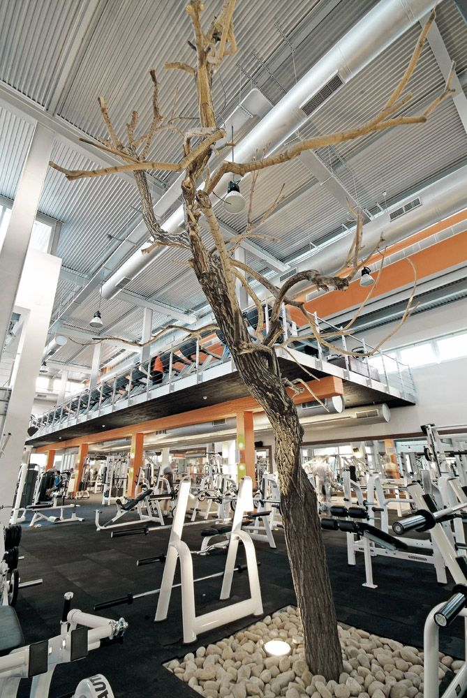 Vy Gym / Symbiosis Designs LTD