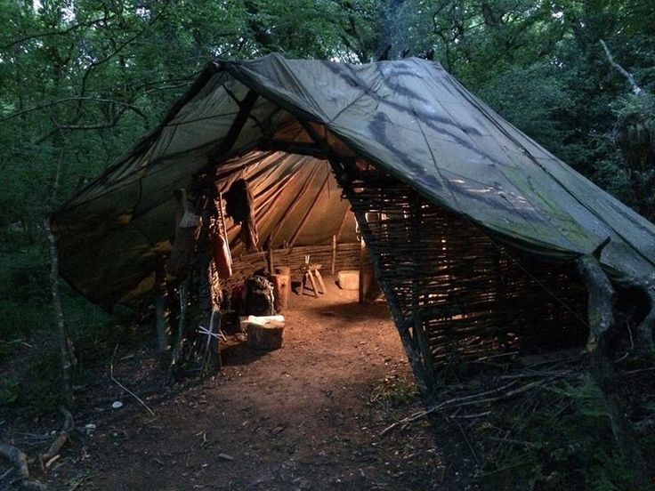 A welcoming woodland shelter