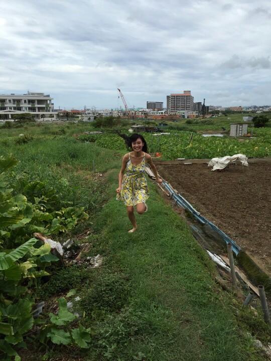 小島瑠璃子 @ruriko_kojima  2015年10月18日 小島瑠璃子、今年もホノルルマラソン走ります!S☆1、ドッキリ仕掛けるのうますぎ。。目標は5時間半切ること!がんばります!(写真は本文と関係ありません。)