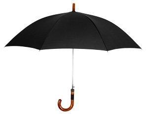 Leighton The Executive Auto Open Stick Umbrella-Black Leighton,http://www.amazon.com/dp/B003D6PYT0/ref=cm_sw_r_pi_dp_a9ZCrb03RT64X8MS