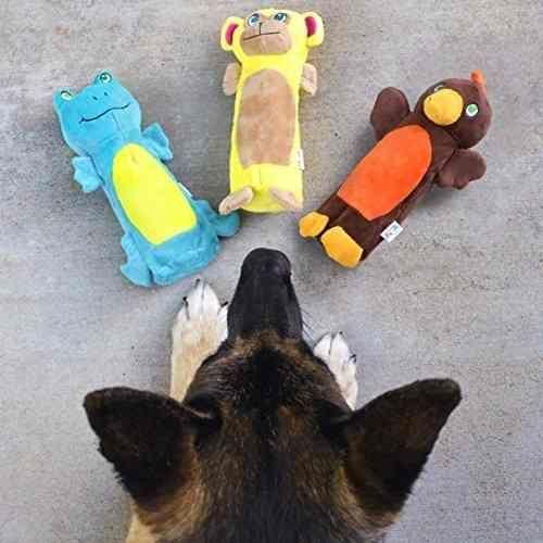 Juguete Para Perros Porta Botella Crujidos Sonido Importado