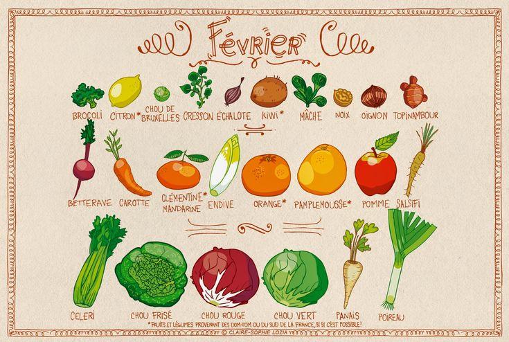 Le calendrier des fruits & légumes de Février | pissenlit