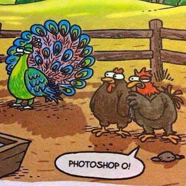 Photoshop o! #karikatür #mizah #matrak #espri #komik #şaka #gırgır #sözler #güzelsözler #komiksözler