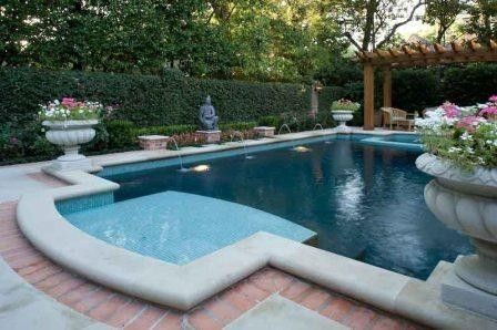 Pool renovation tanning ledge pool pinterest for Pool design with tanning ledge
