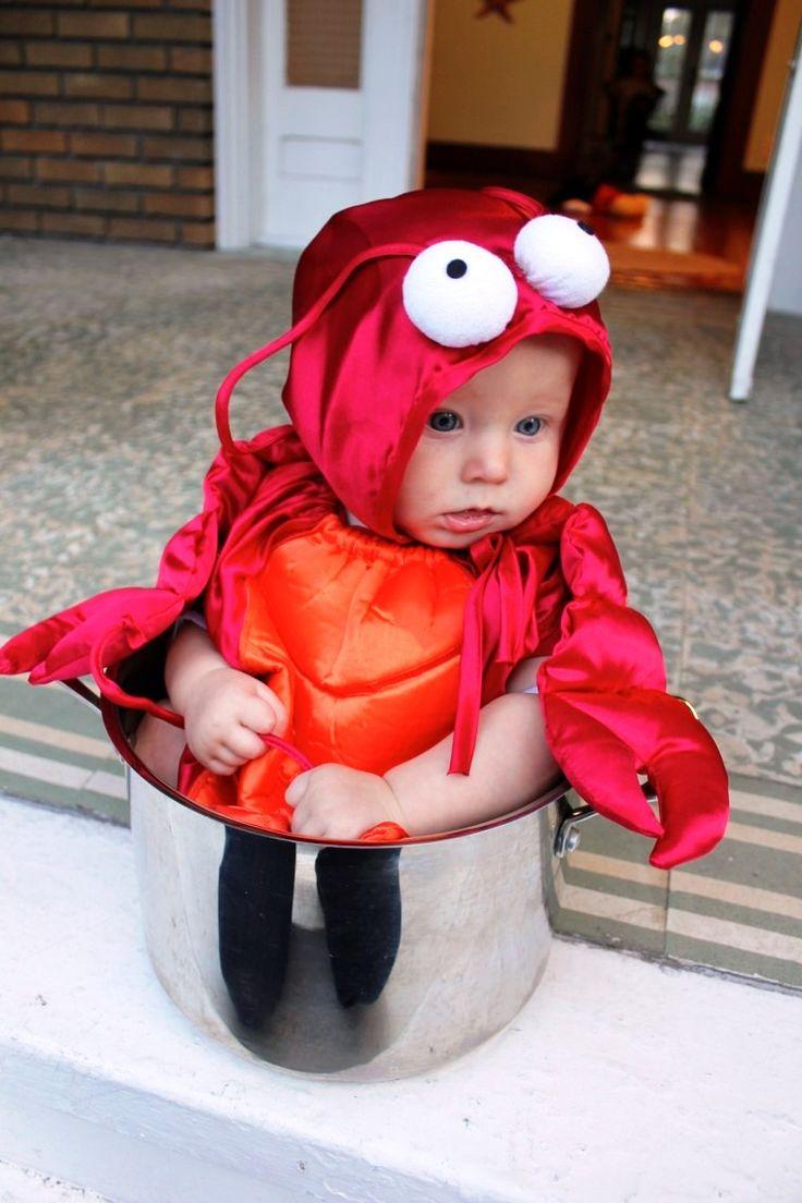 Baby in lobster pot Halloween costume