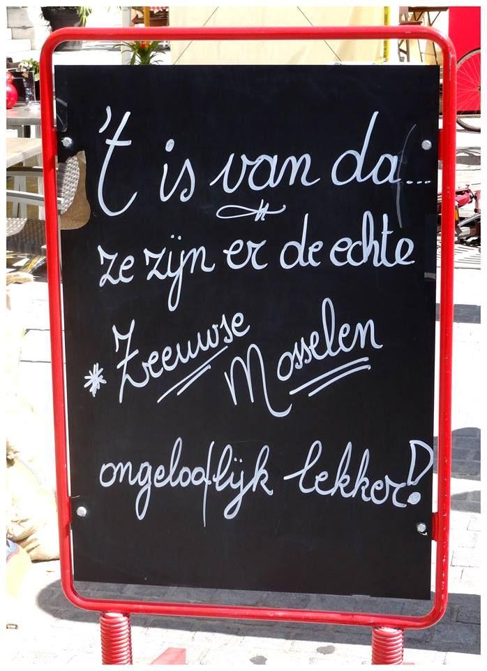 Foto gemaakt door: Olaf van Tuijn  16/08/2013 — in Antwerpen (stad)