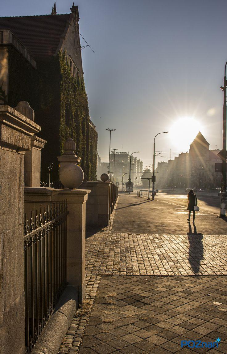 Poznan Poland, ul. Św. Marcin [fot. P. Olszak]