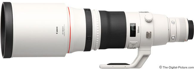 Canon EF 500mm f/4.0 L IS II USM Lens