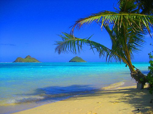 Lanikai Beach, Oahu......my favorite beach in the world