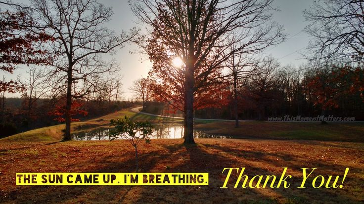 """""""The sun came up. I'm breathing. Thank you!"""""""