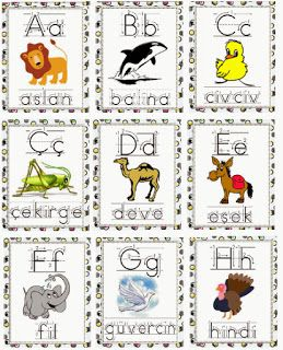 Hayvan Alfabesi - Turkish Animal Alphabet Flashcards