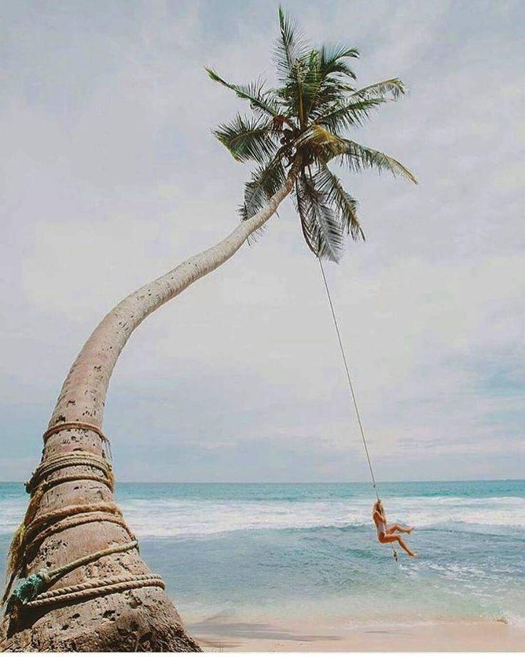 Enjoyable moment @unawatuna beach - Sri Lanka.  Photo by @all_about_iv  #srilanka_excursion #daytours #excursions #beautifulphoto #naturelovers #beautifulsky #shorttrip #excursions #holidaytrip #trip #nextdestination #bestholiday #bestvacation #yoga #morning #wildlifephoto #wildlifephotography #safari #animallover #naturephotography #unawatunabeach #junglebeach #naturetour #wildlifeholidays