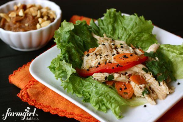 Love this Asian Chicken Salad Lettuce Wrap recipe from @Brenda - a farmgirl's dabbles