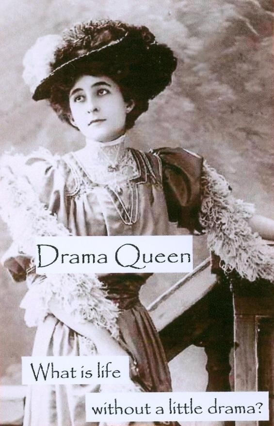 Magnet Drama Queen by CrossEyedCatGifts on Etsy, $3.50