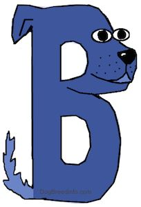 All dogs breed with letter 'B'.. Petsworld Dogbreed