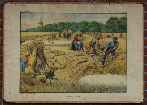 """""""Zomerwerk en zomerweelde: Een julidag op het land"""", schoolplaat van Cornelis JETSES (illustrator, 1873-1955). Jetses werd geboren in de stad Groningen en is begraven in Wassenaar. Hij illustreerde schoolboeken en ontwierp schoolplaten (22), historische prenten en boekbanden. Ook bekend van Ot en Sien, Afke's Tiental en het leesplankje van Hoogeveen."""