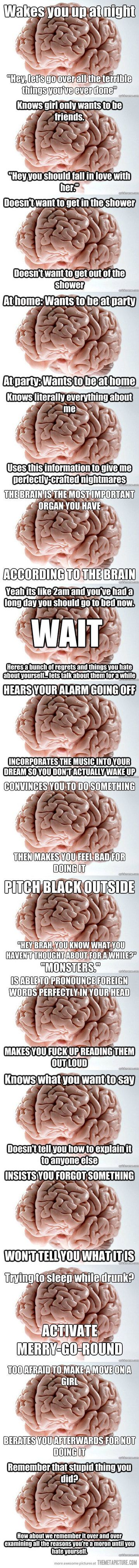 Reasons why your brain is a jerk, especially   right now as I'm wanting to sleep so I'm not late for work.