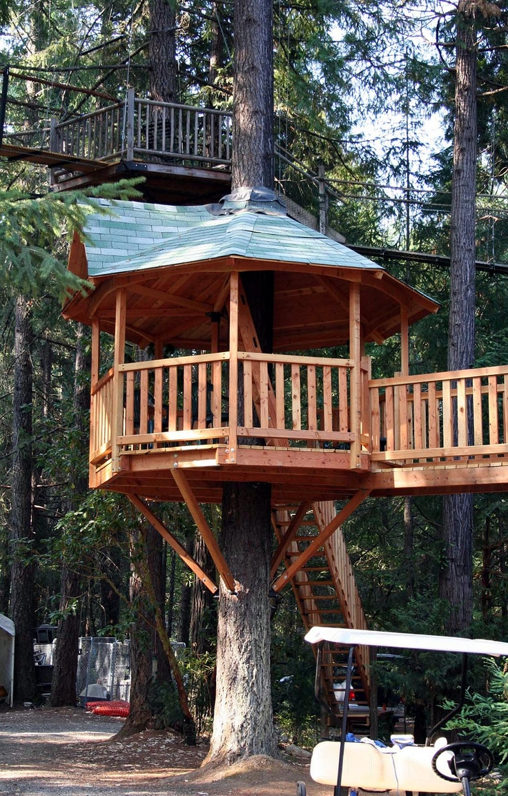 133 best Tree houses images on Pinterest   Treehouses, Architecture and  Awesome tree houses