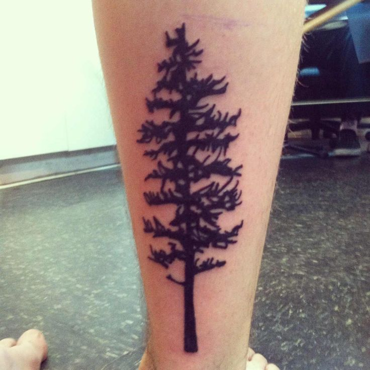 1000 images about hemlock tattoo on pinterest trees for Best tattoo shops in maryland