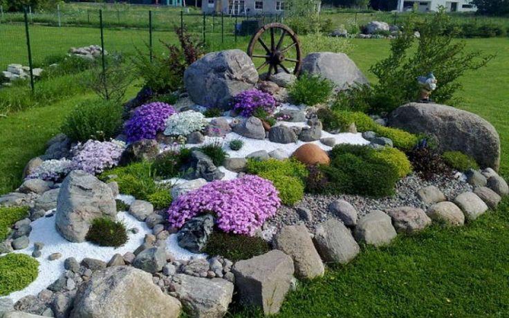 Картинки по запросу многолетние садовые цветы