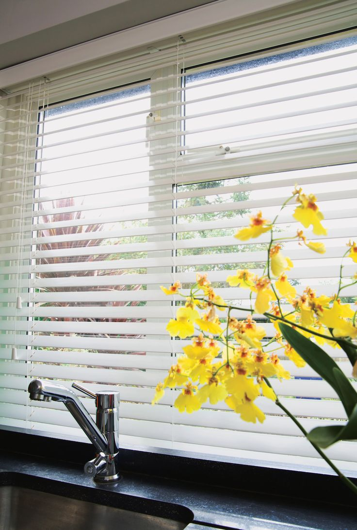 The Econo Venetian Blind is a great looking blind at a great price #venetian #blinds