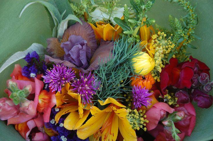 late spring bouquet featuring spuria iris, alstroemeria, snapdragons, calendula, dill, fennel, silver beet, buddleja, statice