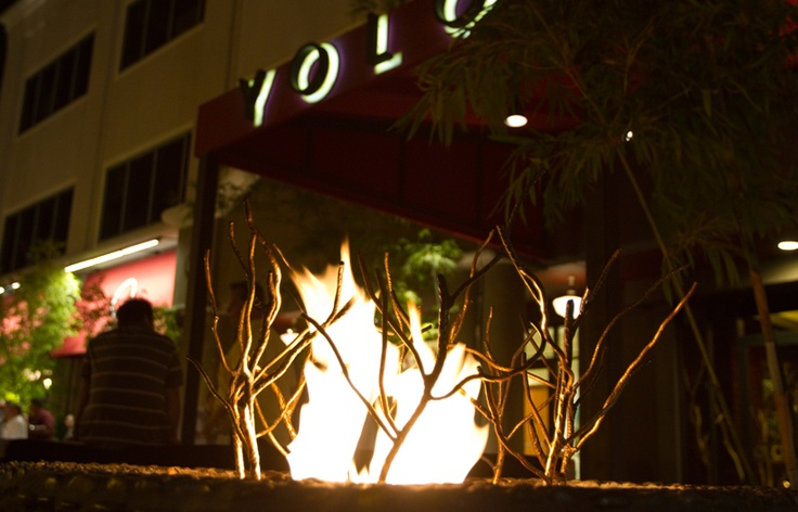 Yolo , Restaurant - Fort Lauderdale Florida  Love this place!