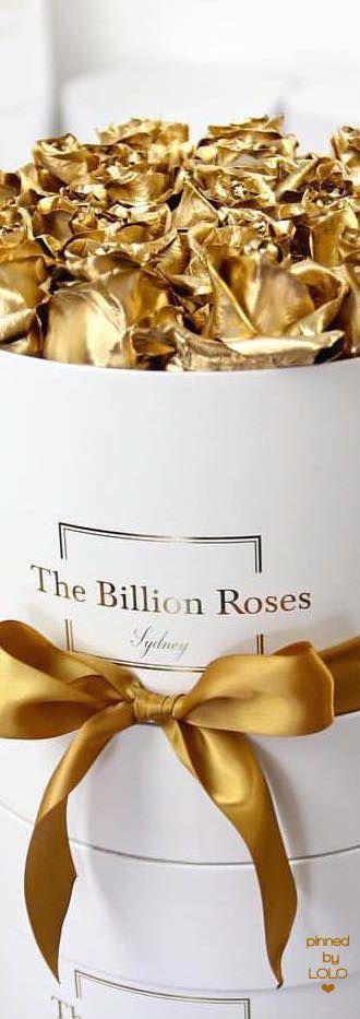 The Billion Roses | LOLO❤︎
