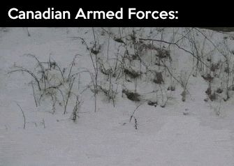 <b>funny</b>-picture-<b>canadian</b>-armed-forces