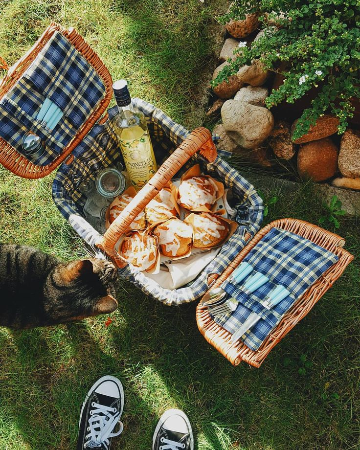 Missing summer a lot... #summer #cat #limoncello #glazed #chia #seeds #muffins #lemon