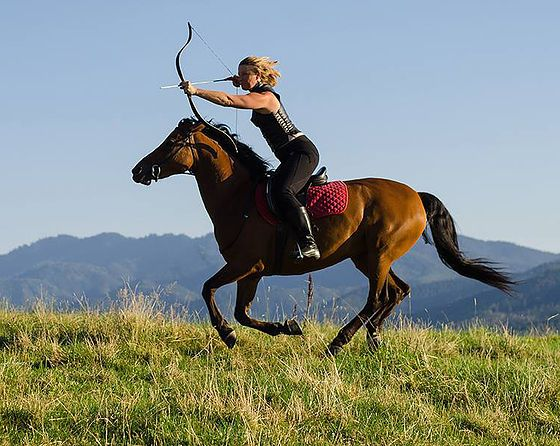 RMA is a horse archery club in Southern Oregon, dedicated to sharing mounted archery through club activities clinics, private instruction and competitions.