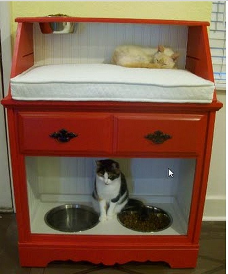 10 Ways to Reuse Old Furniture for Your Pet   HipHomeMaking Follow Us on Facebook ==> https://www.facebook.com/HipHomeMakingOfficial