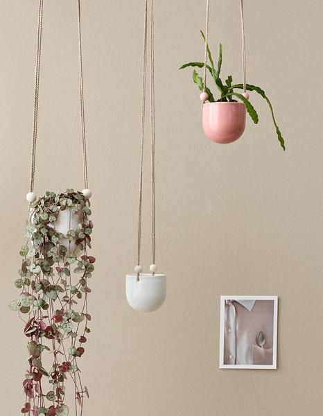 Aarikka Miniamppeli hanging basket: Miniamppeli hanging basket