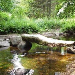 La mystérieuse forêt d'Huelgoat, Finistère, Bretagne.