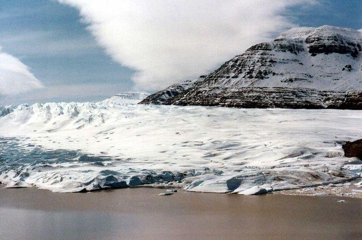 Geleira Cook, no arquipélago de Kerguelen, território francês. A geleira possui 500 km².   – Wikipédia, a enciclopédia livre.